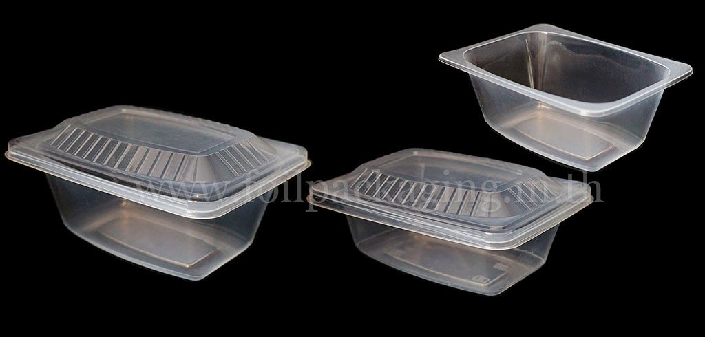 Food container 1